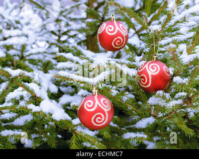 Christmas Red Balls hanging on  snow-covered fir branch - Stock Photo