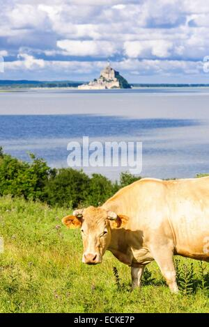 France, Manche, Mont Saint Michel bay, listed as World Heritage by UNESCO, Mont Saint Michel abbey perched on a - Stock Photo