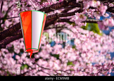 Tokyo, Japan cherry trees and lantern in Ueno Park. - Stock Photo