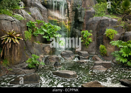 CA02542-00...CALIFORNIA -Artificial waterfall at the base of Strawberry Hill in San Francisco's Golden Gate Park. - Stock Photo