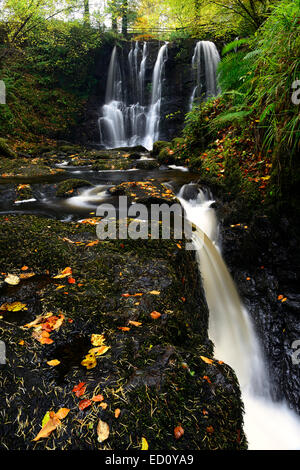 ess-na-crub waterfall falls autumn autumnal inver river glenariff forest park county antrim northern ireland RM - Stock Photo
