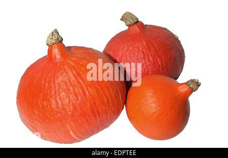 three red kuri squash isolated on a white background - Stock Photo