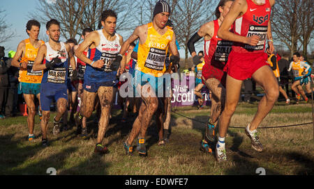 Edinburgh Holyrood Park, Scotland UK 10 January 2015. Action shots from Great Edinburgh Cross Country races. Winner - Stock Photo