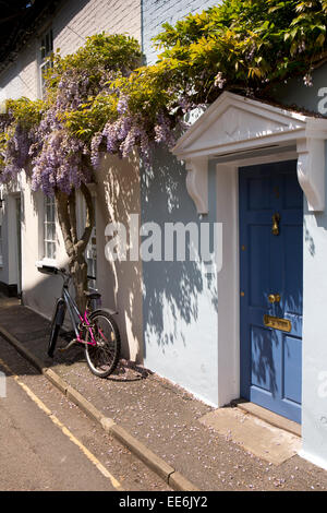 UK, London, Twickenham, Ferry Road, wisteria hung terraced cottage door - Stock Photo