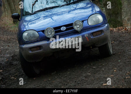 Car competitors on the Fingle Section of the 2013 Exeter Trial - Stock Photo
