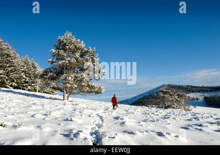 A lone walker in a remote scottish glen enjoys the magical scenery created by an overnight snow shower - Stock Photo