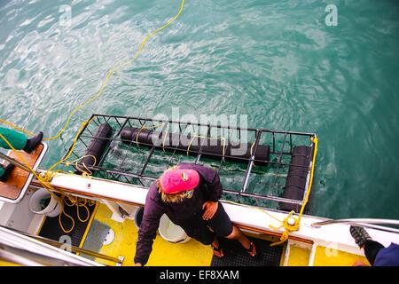 Sharklady Adventures Boat Tour in Van Dyks Bay, Gansbaai - Stock Photo