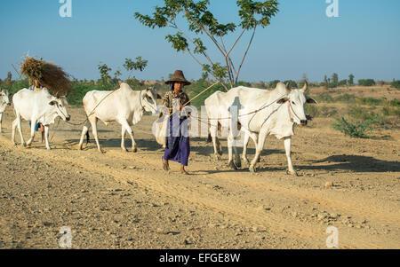 Burmese way of life - Stock Photo