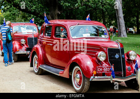 Classic cars on display, RACV Australia Day picnic and Federation Vehicle Display, Kings Domain, Melbourne, Victoria, - Stock Photo