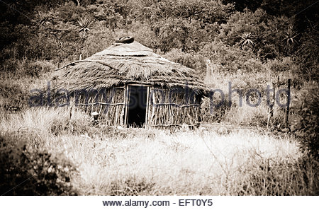 Zulu Hut Building Built Structure House Home Dwelling Traditional Straw Hut Thatch Thatched Roof Plants Foliage - Stock Photo