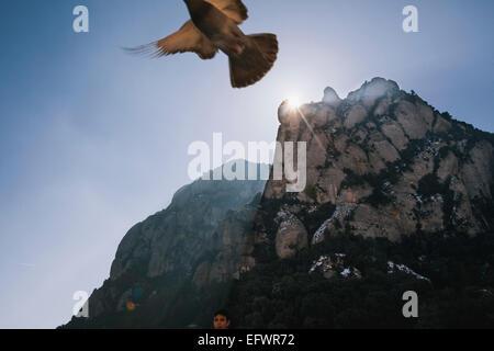 Pigeon flying over Montserrat, Catalonia - Stock Photo