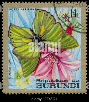 REPUBLIC OF BURUNDI - CIRCA 1968: A stamp printed in Burundi shows a butterfly Charaxes eupale , circa 1968 - Stock Photo