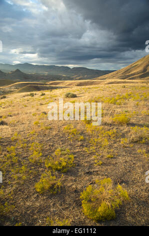 Sunset in the high country desert, John Day fossil beds, Oregon - Stock Photo