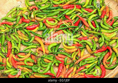 Wicker tray of green and red chili peppers sundrying along with some sparse red peppers on the floor in the rear - Stock Photo