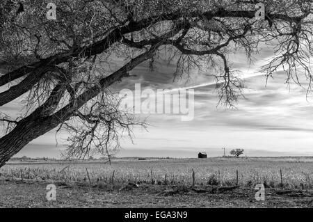 Countryside near Shattuck, Ellis County, Oklahoma, USA - Stock Photo