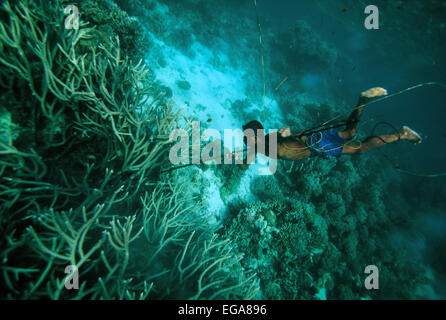 Spearfishing, Diver, Kitava Island, Trobiand Islands, Papua New Guinea - Stock Photo