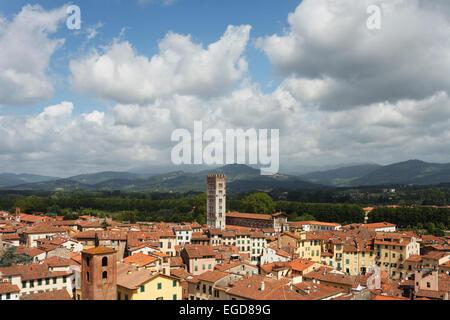 View from Torre Guinigi, tower, Piazza dell Anfiteatro, square, Basilica di San Frediano, romanesque church, historic - Stock Photo