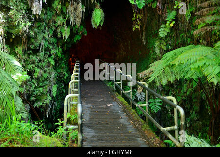 Entrance to Thurston lava tube in Volcanoes National Park on Big Island, Hawaii, USA - Stock Photo