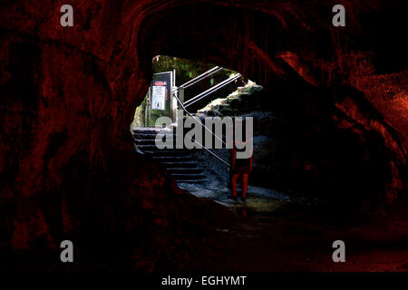 Thurston lava tube in Volcanoes National Park on Big Island, Hawaii, USA - Stock Photo