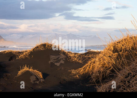 Dramatic scenery with black sand dunes, beach and mountains at Vestrahorn mountains, Hofn, South Iceland in February - Stock Photo