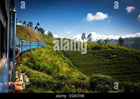 train from Nuwara Eliya to Kandy among tea plantations in the highlands of Sri Lanka - Stock Photo