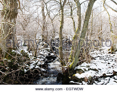 Holwick, Middleton-in-Teesdale, Co Durham, UK 2nd March 2015. After the overnight snowfall the morning sunshine - Stock Photo