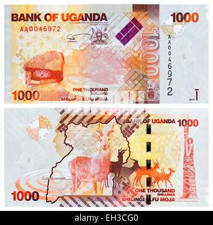 1000 shillings banknote, Antelope Kudu, Uganda, 2010 - Stock Photo
