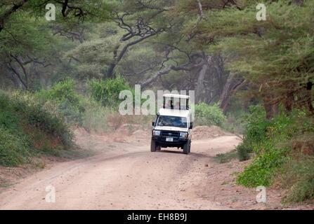 Tourists in open topped Safari Jeep driving through Lake Manyara National Park located in Arusha Region Tanzania - Stock Photo