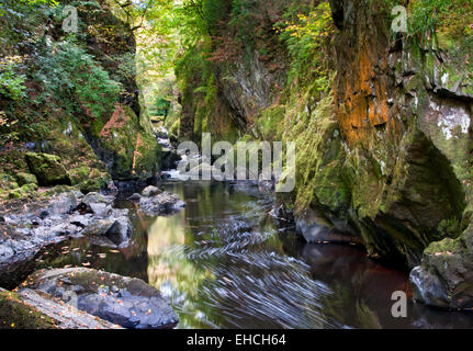The Fairy Glen on The Afon Conwy, Near Betws Y Coed, Snowdonia, North Wales, UK - Stock Photo
