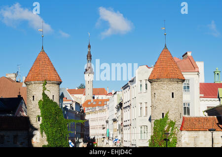 Summer Street Viru in Tallinn - Stock Photo