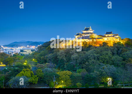 Wakayama, Japan Castle and downtown cityscape. - Stock Photo