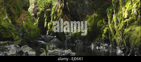 Fairy Glen, Betws y Coed; Gwynedd, North West Wales - Stock Photo