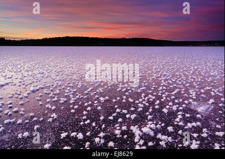 Frost roses on the ice and colorful skies at sunset in the lake Vansjø, Østfold, Norway. Vansjø is a part of the - Stock Photo