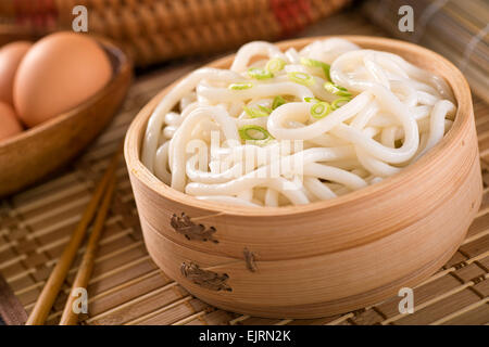 Delicious Japanese udon noodles with green onion. - Stock Photo