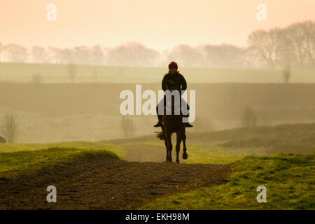 Countryside gallops at Middleham, North Yorkshire Moors landscape, Wensleydale.   Bright, misty, hazy morning start - Stock Photo