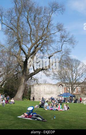 People enjoying sunshine sitting on the grass in the Museum Gardens, City of York, England, UK - Stock Photo