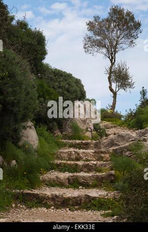Stairs to Castle of Kantara - Stock Photo