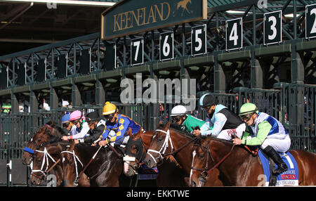Lexington, KY, USA. 12th Apr, 2015. April 11, 2015: Divining Rod and Julien Leparoux win the 34th running of The - Stock Photo