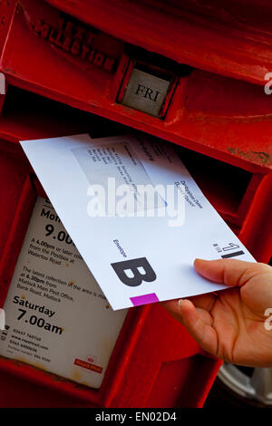 Person posting a UK postal vote ballot envelope for an election in a traditional British red pillar box - Stock Photo