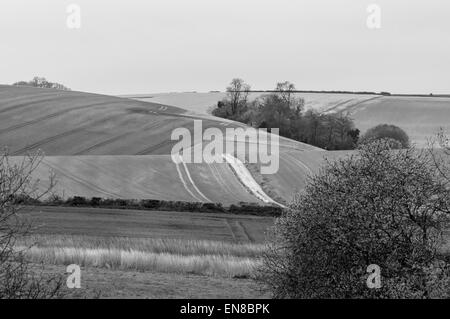 Black and white view of tracks in the chalk, Down lands near Amberley, West Sussex - Stock Photo