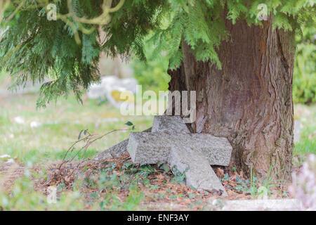 A neglected gravestone, fallen cross beneath a mature tree - Stock Photo