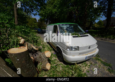 A cracked windscreen of a van caused by a tree falling on it during a storm in Bognor Regis, West Sussex, UK. - Stock Photo