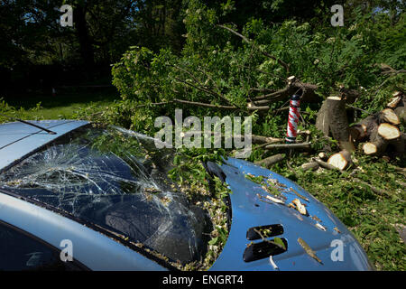 The cracked windscreen of a van caused by a tree falling on it during a storm in Bognor Regis, West Sussex, UK. - Stock Photo