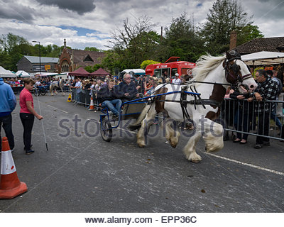 Wickham, Hampshire, UK. 20th May, 2015. The Wickham Horse Fair started today. The fair is one of just two major - Stock Photo