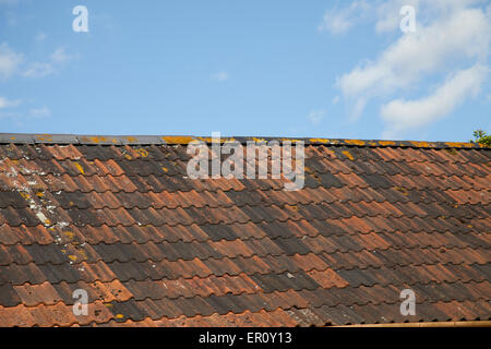Multi coloured Roman tiles on an English roof, set against a blue sky - Stock Photo