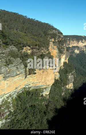 View from Queen Victoria Lookout Valley of the Waters Nature Track Blue Mountains National Park Wentworth Falls - Stock Photo