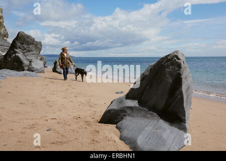A woman exercising a greyhound on an English beach. Slate rock outcrops in the foreground. - Stock Photo