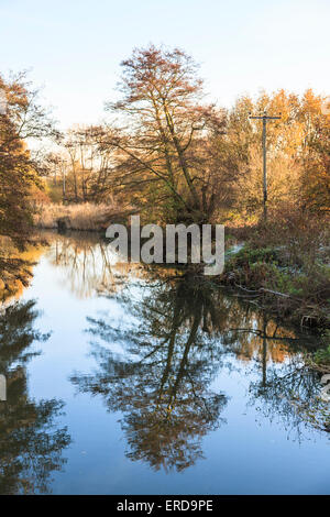 River Wey at Pyrford, Surrey, UK - reflections of bare leafless trees in still water in winter.  Typical pretty - Stock Photo