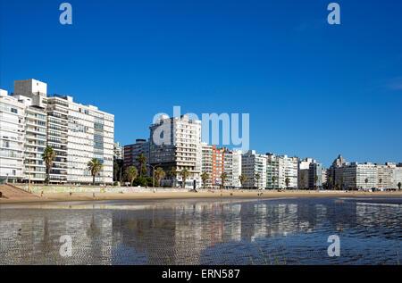 Seaside apartment blocks Playa de los Pocitos Montevideo Uruguay - Stock Photo