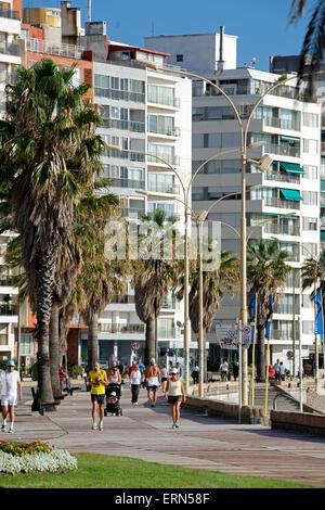 Walkers along Rambla Playa de los Pocitos Montevideo Uruguay - Stock Photo